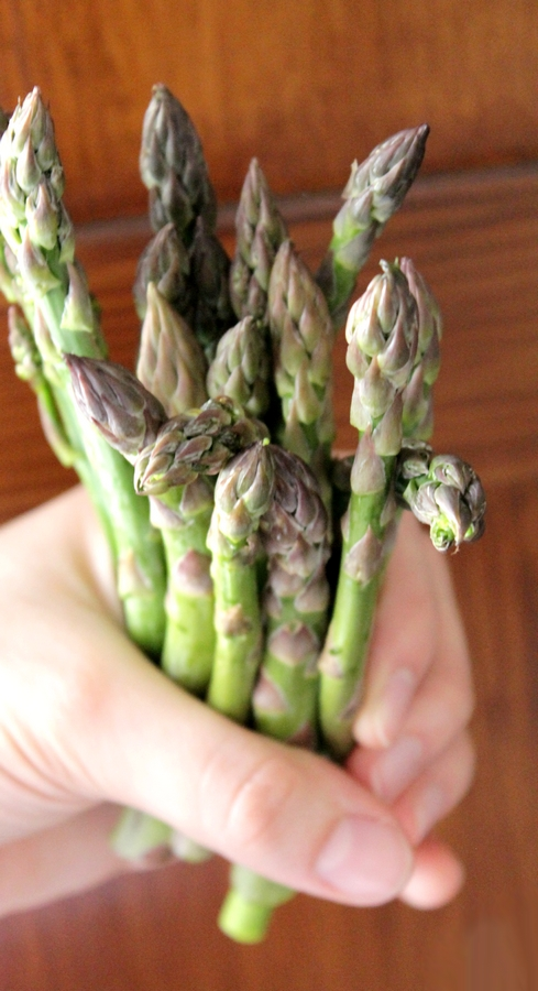 asparagi per strudel