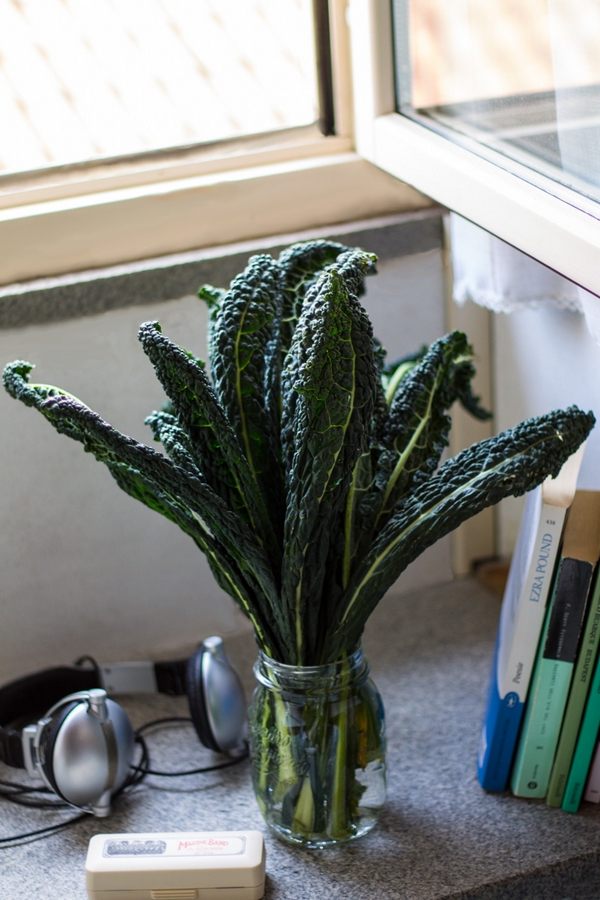 cavolo nero black cabbage